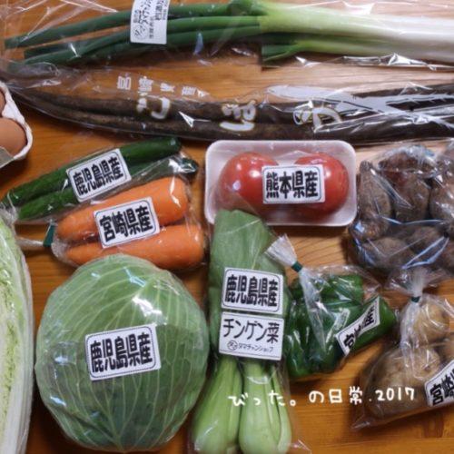 九州産直の野菜セット
