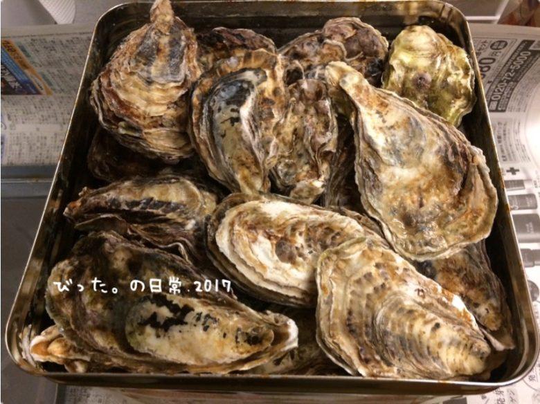 岡山産の殻付き牡蠣