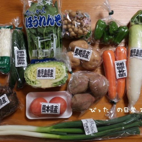 九州産直野菜セット