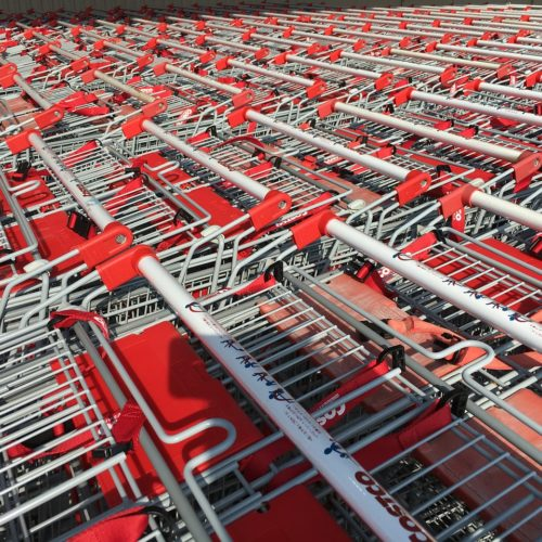 costco-shopping cart