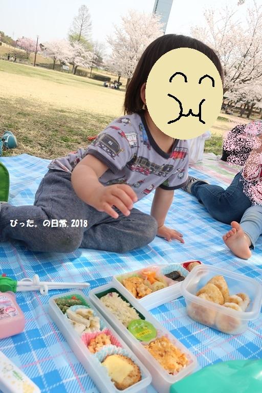 ohanami,my son,息子,お弁当,お花見,古代蓮の里