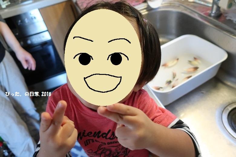 japanese ginger,みょうが