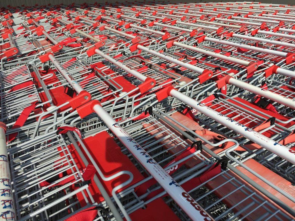 costco-shopping cart