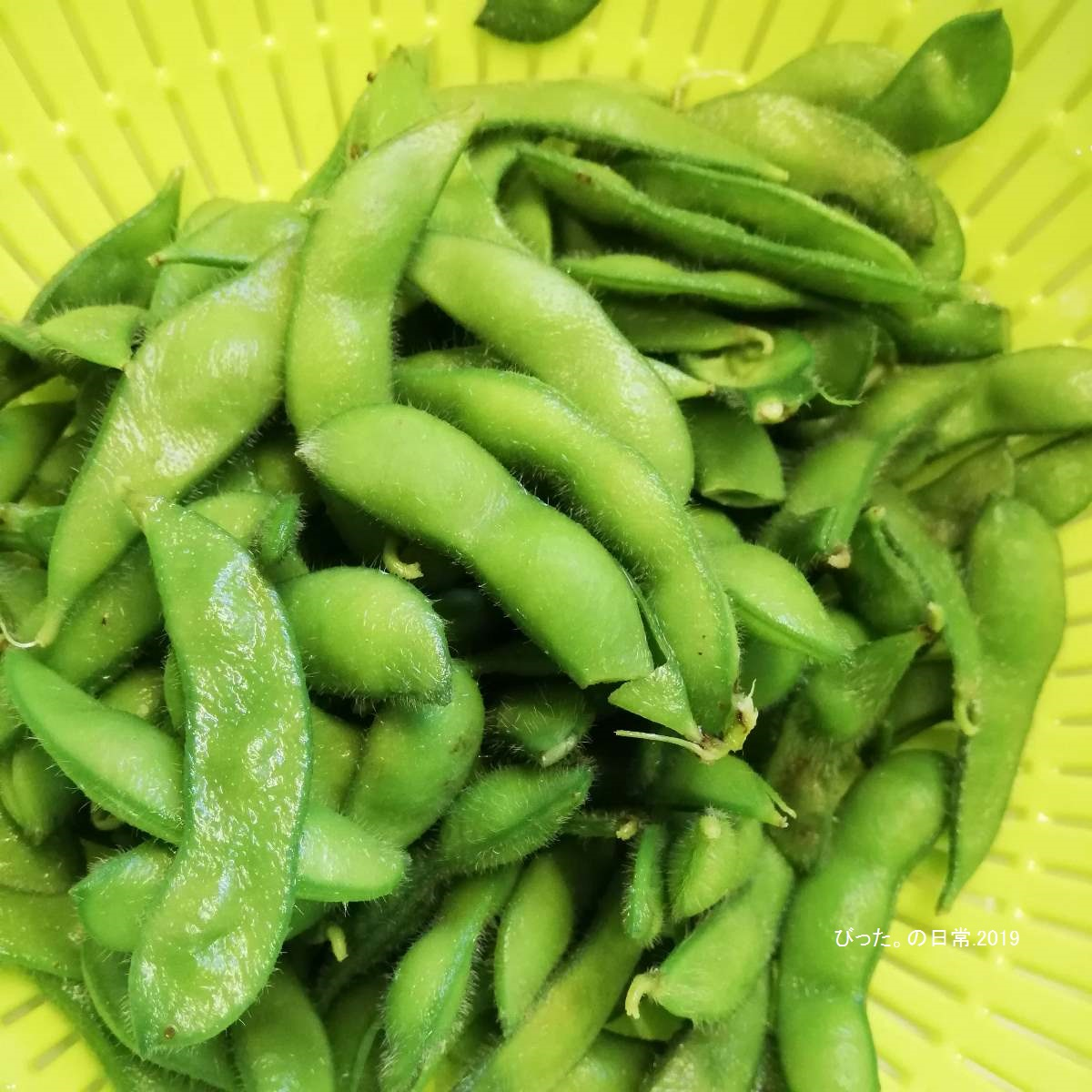 枝豆,Edamame